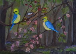 Birds!!